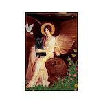 Angel (#1) & Schipperke Rectangle Magnet (10 pack)