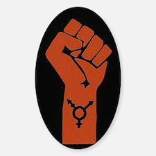 Transgender Solidarity Sticker (Oval)
