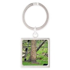 Bear and cubs Square Keychain