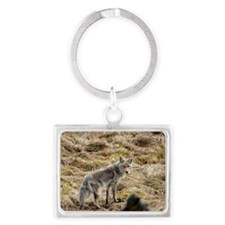 Coyote Landscape Keychain