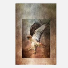 Evening Hawk Postcards (Package of 8)