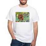 Irises & Ruby Cavalier White T-Shirt