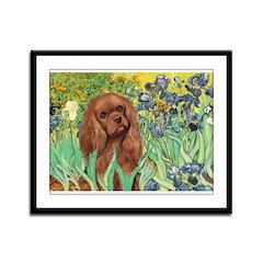 Irises & Ruby Cavalier Framed Panel Print