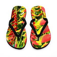 Funny Bali Flip Flops