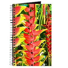 Unique Baby hawaii Journal
