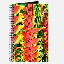 Funny Rainbow hawaii Journal