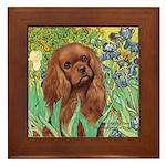 Irises & Ruby Cavalier Framed Tile
