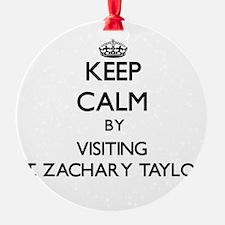Cute Zachary Ornament
