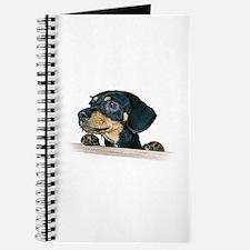 Daschund Illustration - Journal