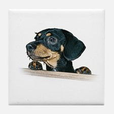 Daschund Illustration -  Tile Coaster