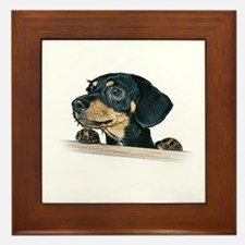 Daschund Illustration -  Framed Tile