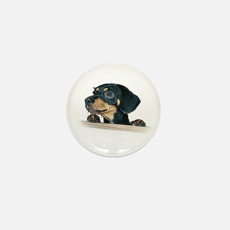 Daschund Illustration - Mini Button