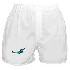 sawfish, saw fish, green, fish, animal Boxer Short