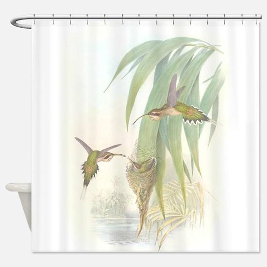 Hummingbirds & Nests Shower Curtain