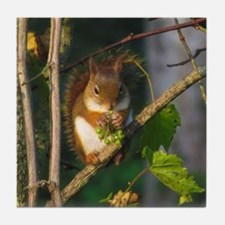 Red Squirrel Tile Coaster