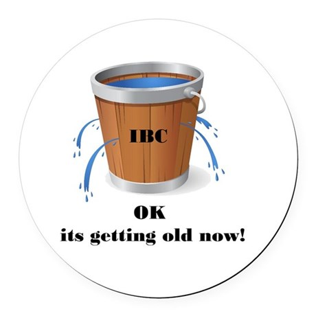 ok its getting old now ice bucket Round Car Magnet