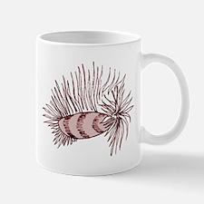Nudibranch Mollusk Mugs