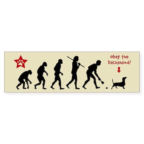 Dachshund Evolution Bumper Sticker
