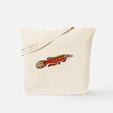 killifish, killi fish, tropical, colorful, fish, a