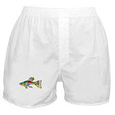 Colorful Guppy Fish Boxer Shorts