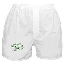Green Frog Boxer Shorts
