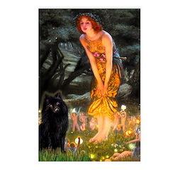 Fairies & Schipperke Postcards (Package of 8)