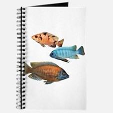 Cichlid Treo Journal