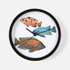 Cichlid Treo Wall Clock