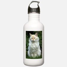 Flame Point Siamese Water Bottle