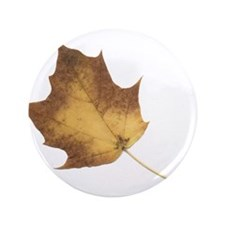 "Autumn Leaf Fall Season 3.5"" Button"