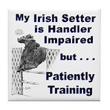 Irish setter Drink Coasters