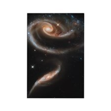 ARP 273 a Rose of Galaxies Rectangle Magnet