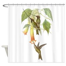 Goulds Hummingbirds & Datura Shower Curtain