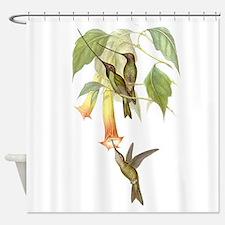 Goulds Hummingbirds & Datura Shower Curtain