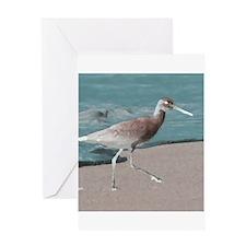 sandpiper teal Greeting Cards