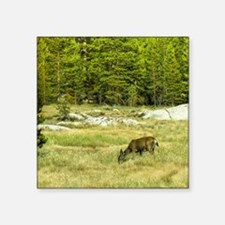 """Peacefully Grazing Square Sticker 3"""" x 3"""""""