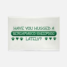 Hugged Bergamasco Rectangle Magnet (100 pack)