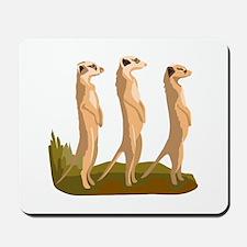 Three Meerkats Mousepad