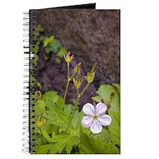 Unique Yosemite Journal