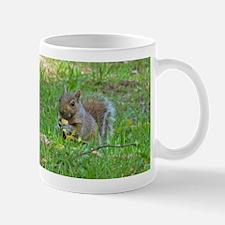 Grey Tree Squirrel Mugs