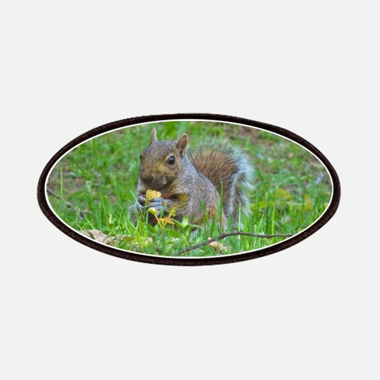 Grey Tree Squirrel Patches
