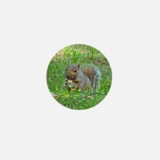Grey Tree Squirrel Mini Button