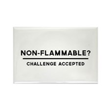 Non-Flammable? Challenge Accepted Magnets