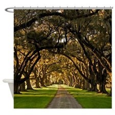 Lowcountry Road Shower Curtain