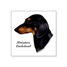 "Miniature Dachshund Square Sticker 3"" x 3"""