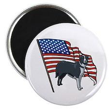 USA Border Collie Magnet