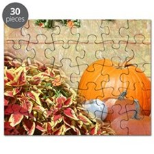Fall Colors and Leaves Puzzle