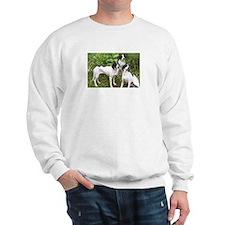 Three dog Sweatshirt