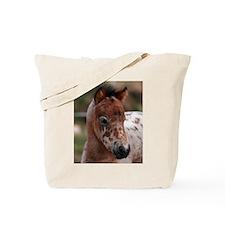 """Knabstrup foal 1"" Tote Bag"