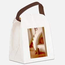 Sepia Southwest Steps Canvas Lunch Bag